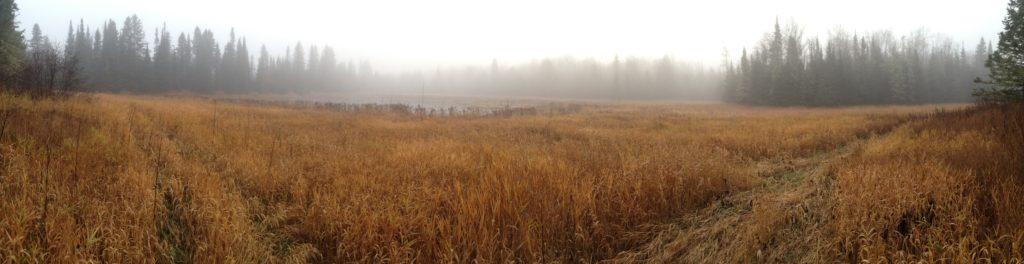 land-preservation